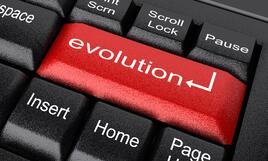 Evolve your website